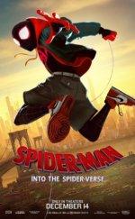 Örümcek Adam Örümcek Evreninde Filmi (2018)